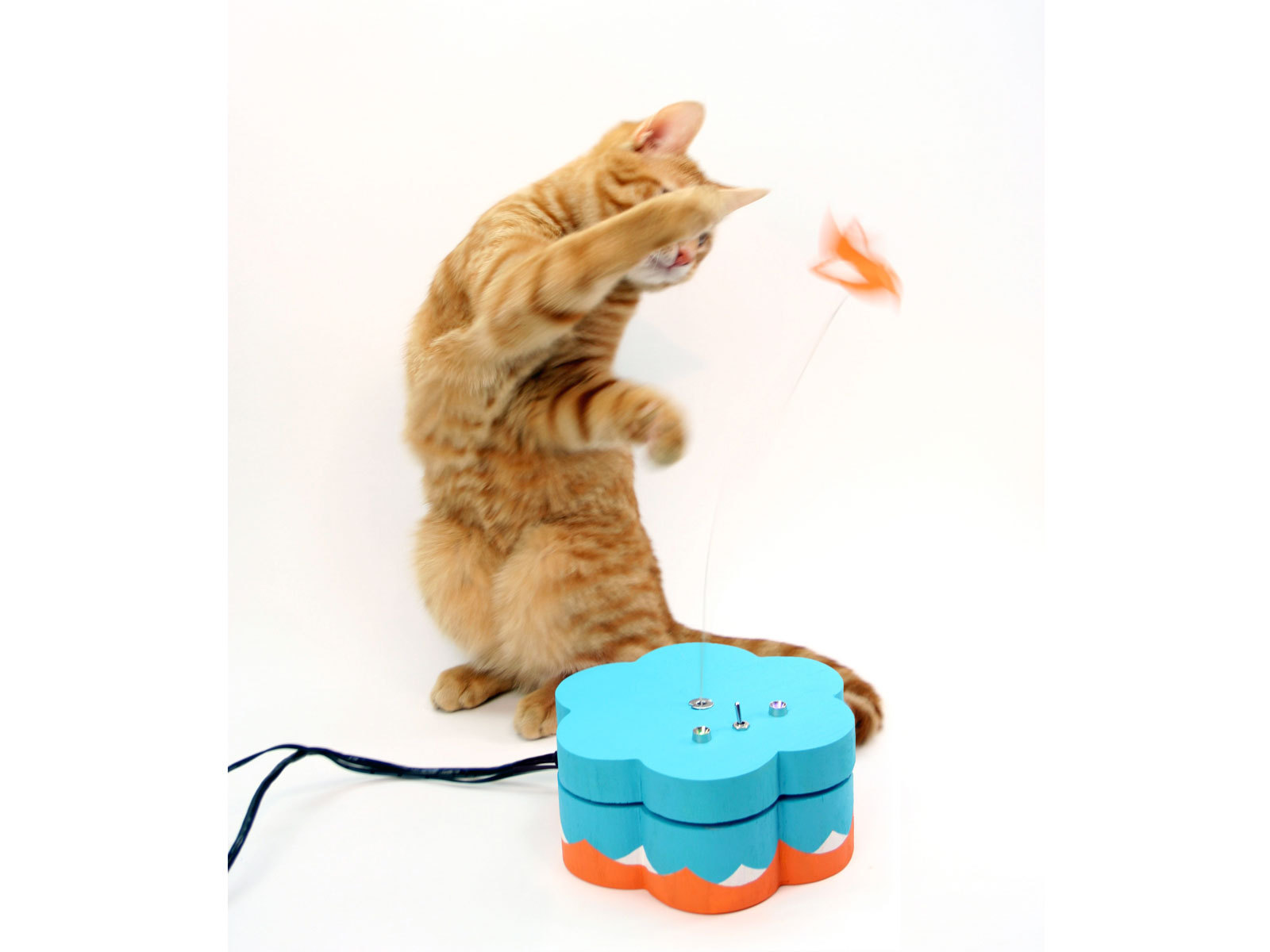 Kitty Twitty Cat Toy
